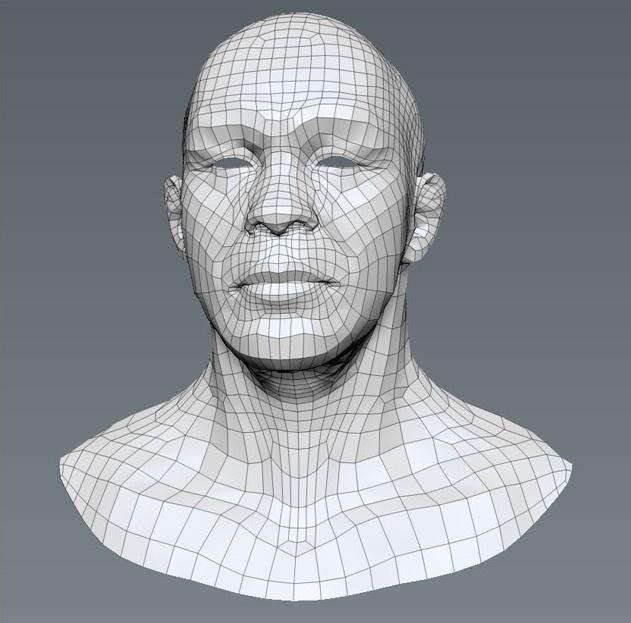Fig. 03_mesh_head_model