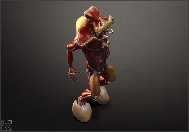 A render test for the muscle. ©2014 Cameron Farn