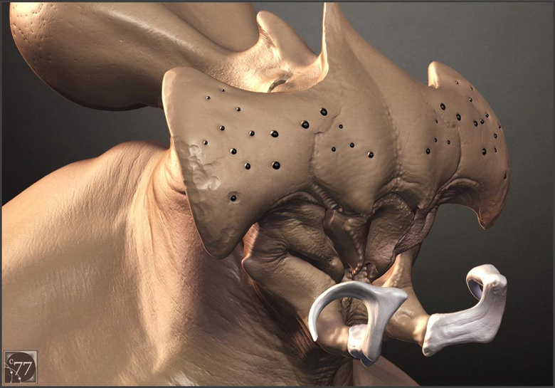 Micro detail render test 2, ©2014 Cameron Farn