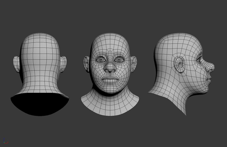 Final head topology
