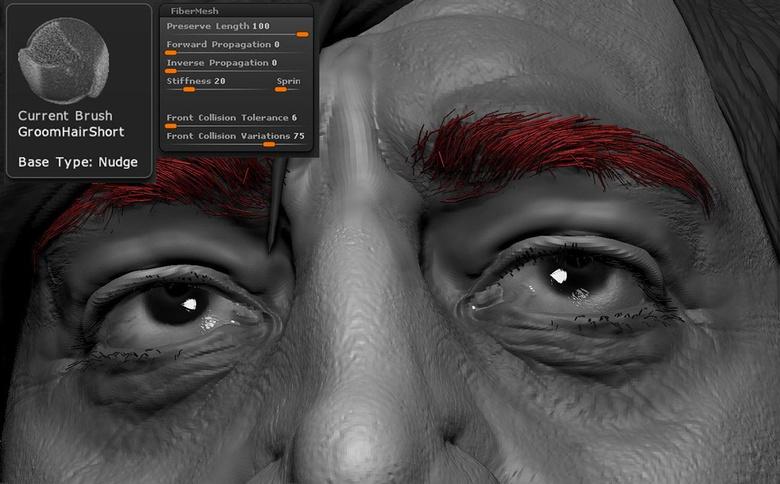 Generating eyebrows by using Fibermesh
