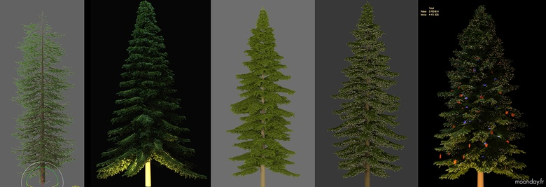 Evolution of the great Christmas tree until its final form reaching 3.7 million polygons