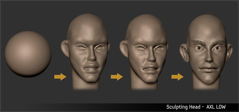 Using a ZSphere to sculpt the head