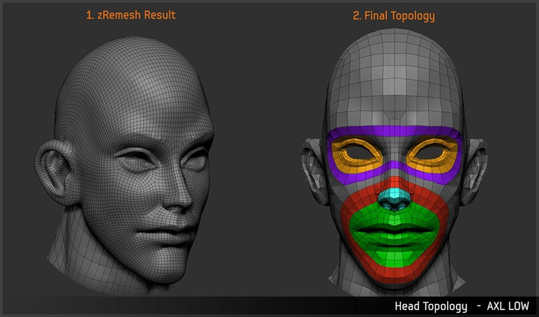 Retopologizing the head by hand