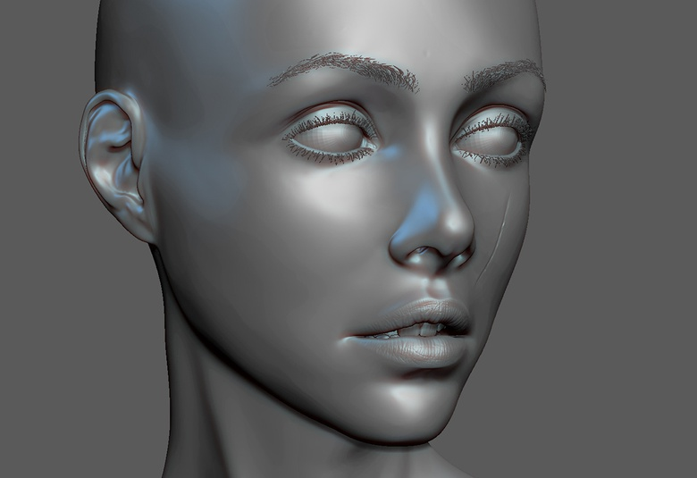 The face in ZBrush, with eyebrows applied
