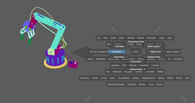 Switch between views to make the process of modelling and animating easier.