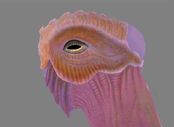 Fig. 2_texture_creature