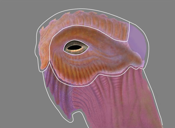Fig. 3_shaders_creature