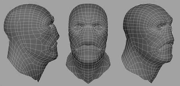 Fig. 02_base_mesh_head