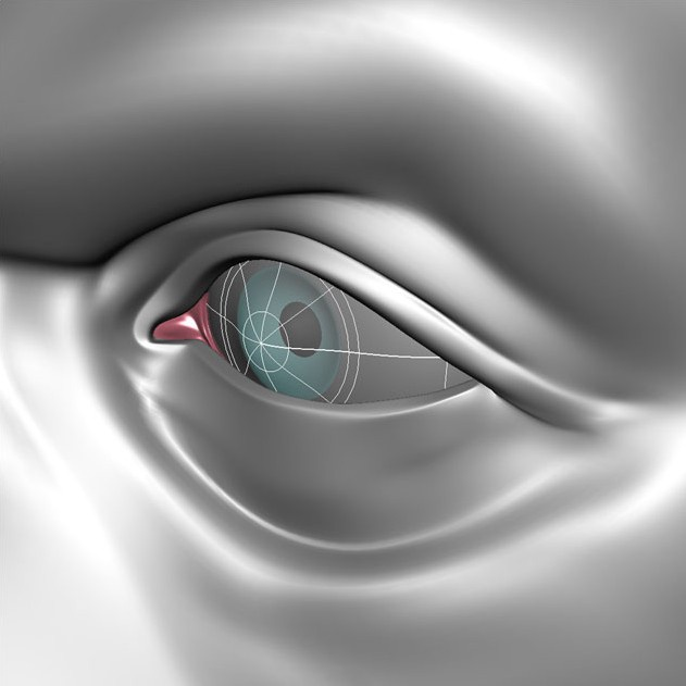 Fig. 07_eye_modeling_scultping