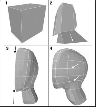 Fig. 6-3 Head Steps 1-4. 1). Making a box. 2). Dividing it and bevel extruding the neck down. 3). Dividing the head down the middle and shaping only half of it. 4). Adding extra lines for more detailed modeling.