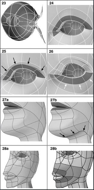 Fig. 6-7 Steps 23-28. 23). Completing the eyesocket. 24). Dividing polygons above the eye opening. 25). Dragging points down to form the upper eyelid. 26). Splitting the polygons below the eye opening to make a crease 27). Refining the jaw by splitting polygons. 28). Splitting polygons around the lips.