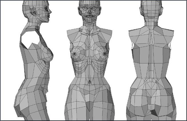 Fig. 6-18 The female torso in low polygon mode.