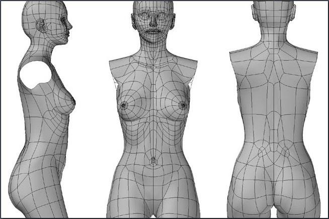 Fig. 6-19 The female torso in subdivision mode.