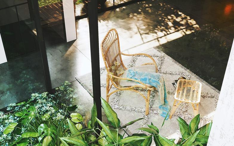 arch-viz, chair, plants