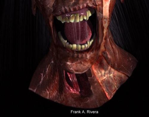 Untitledby Frank A. Rivera