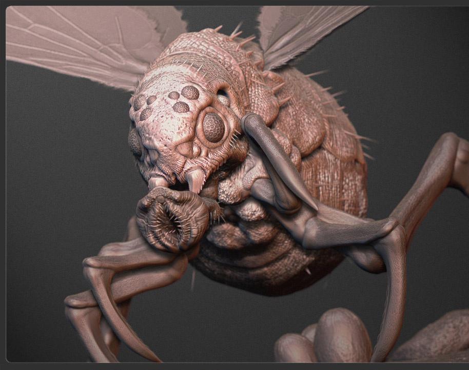 'Bug'by Maarten Verhoeven