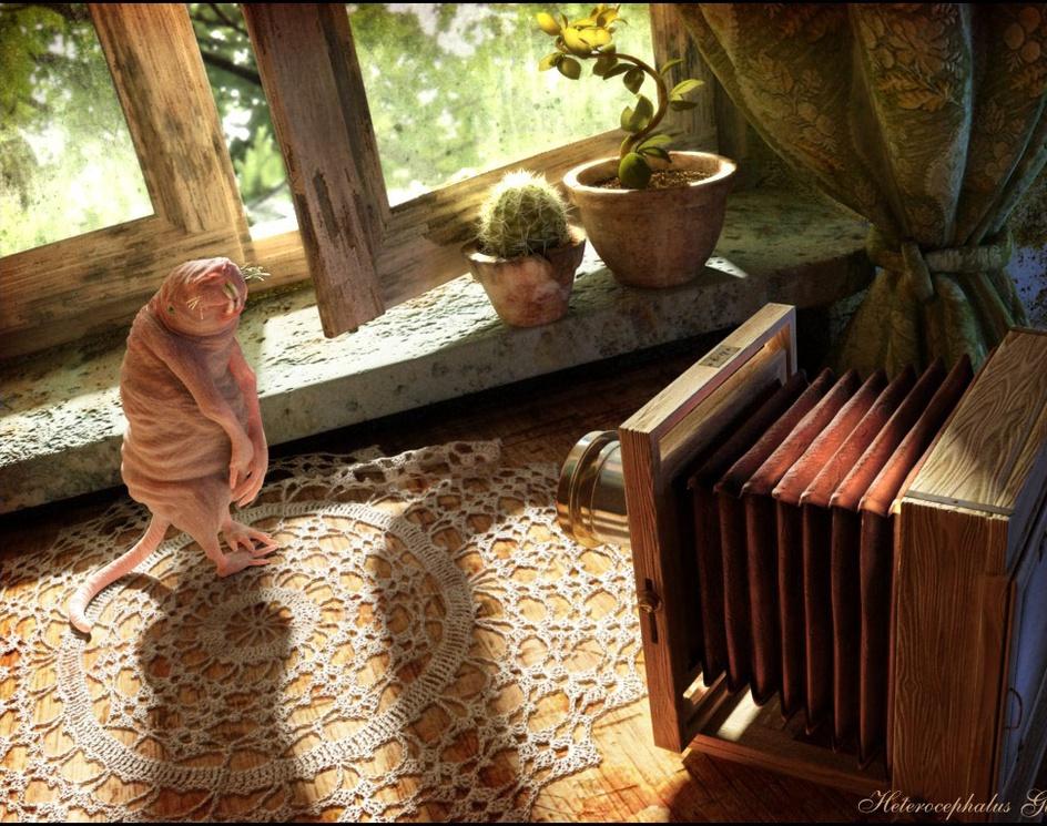 Untitledby Anna Celarek