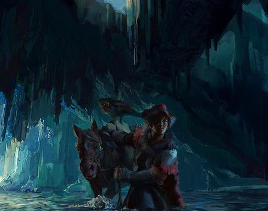 Falconer / Cave Poolby Hidehisa Miyagawa