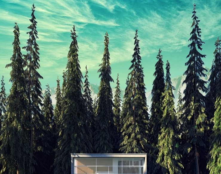House in the forestby genesiswin