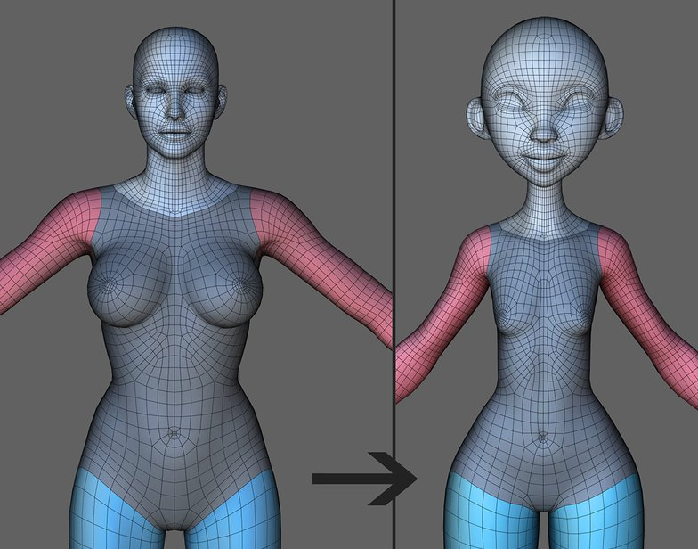 female body proportions 2d