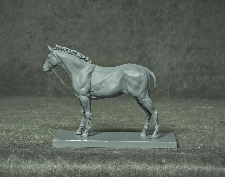 Equine écorchéby Gael Kerchenbaum