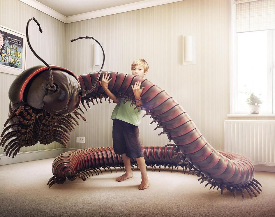 Boy Meets Bug - Centipedeby James Gardner