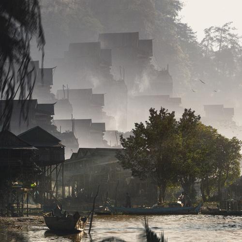 asian woodland scenery 2d concept art