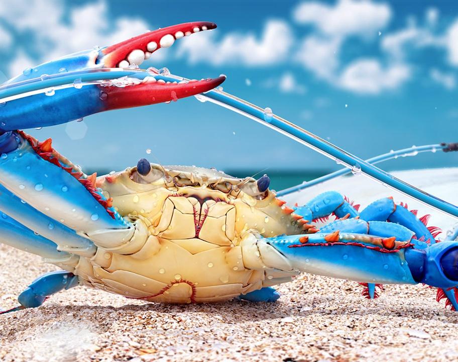 Blue Crabby 3DLevsha