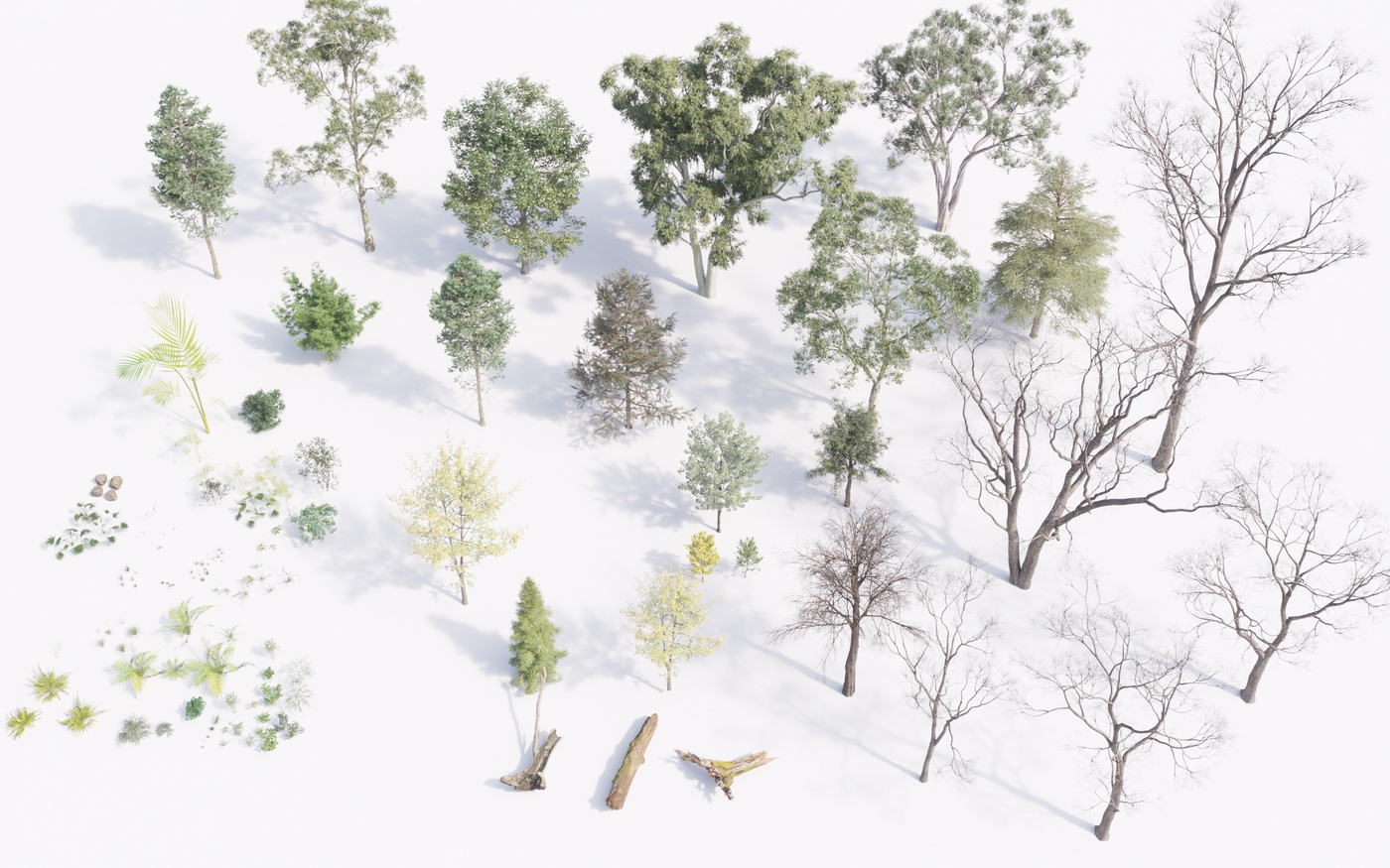 woods visdev image nature 3d scattering library