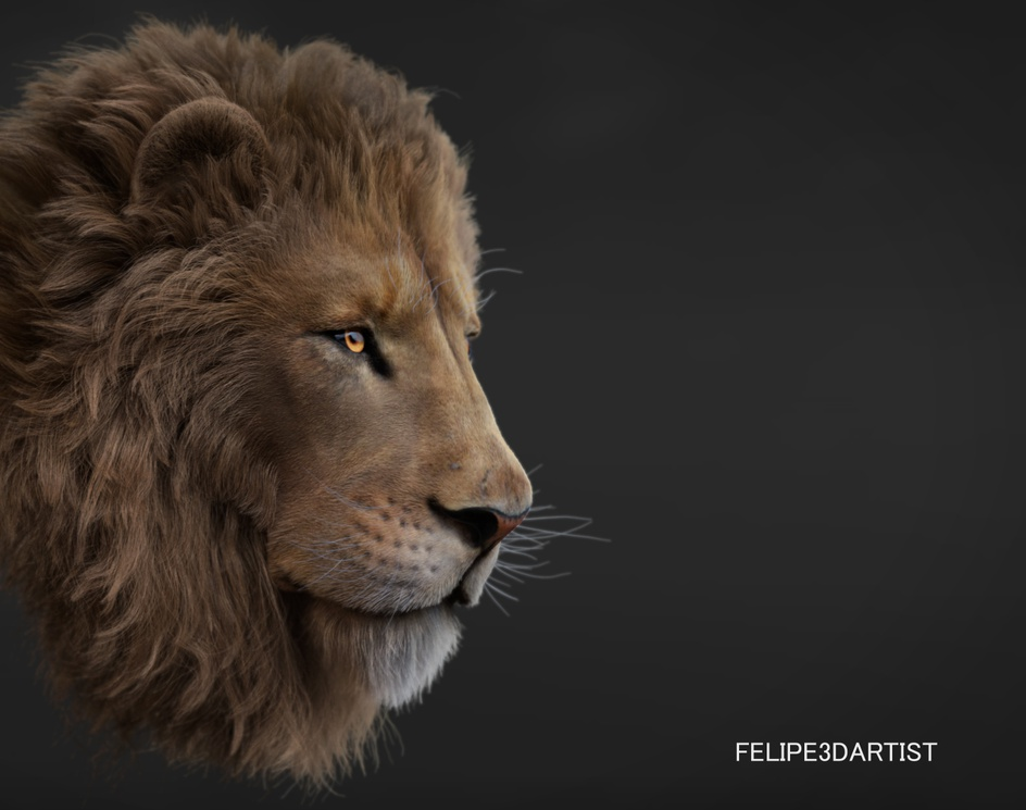 LION - XGEN - GROOM TD - FELIPE3DARTISTby felipe3Dartist