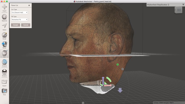 3d head modeling side profile