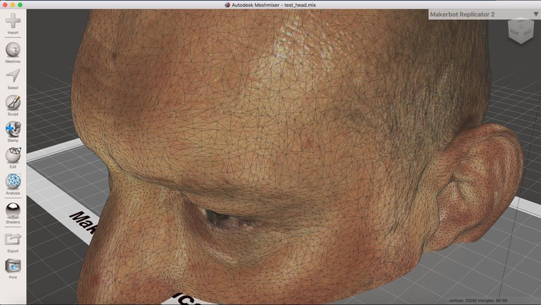 3d head scanned imagery