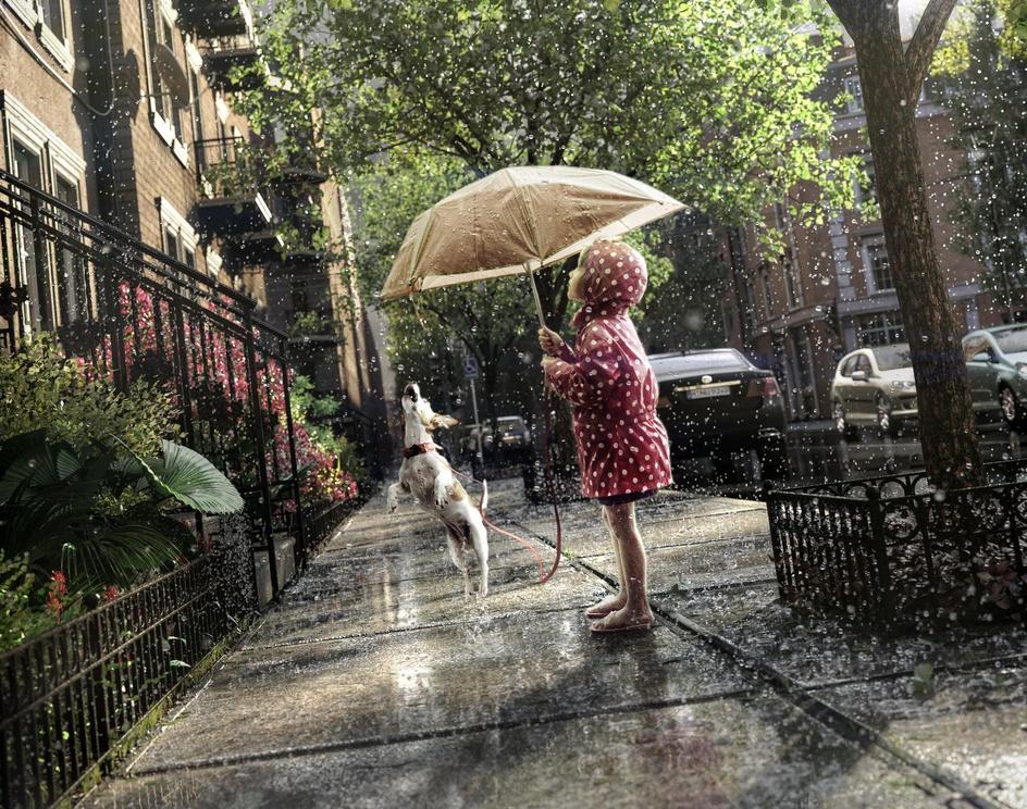 Summer rain in the cityby Marcin Jastrzebski