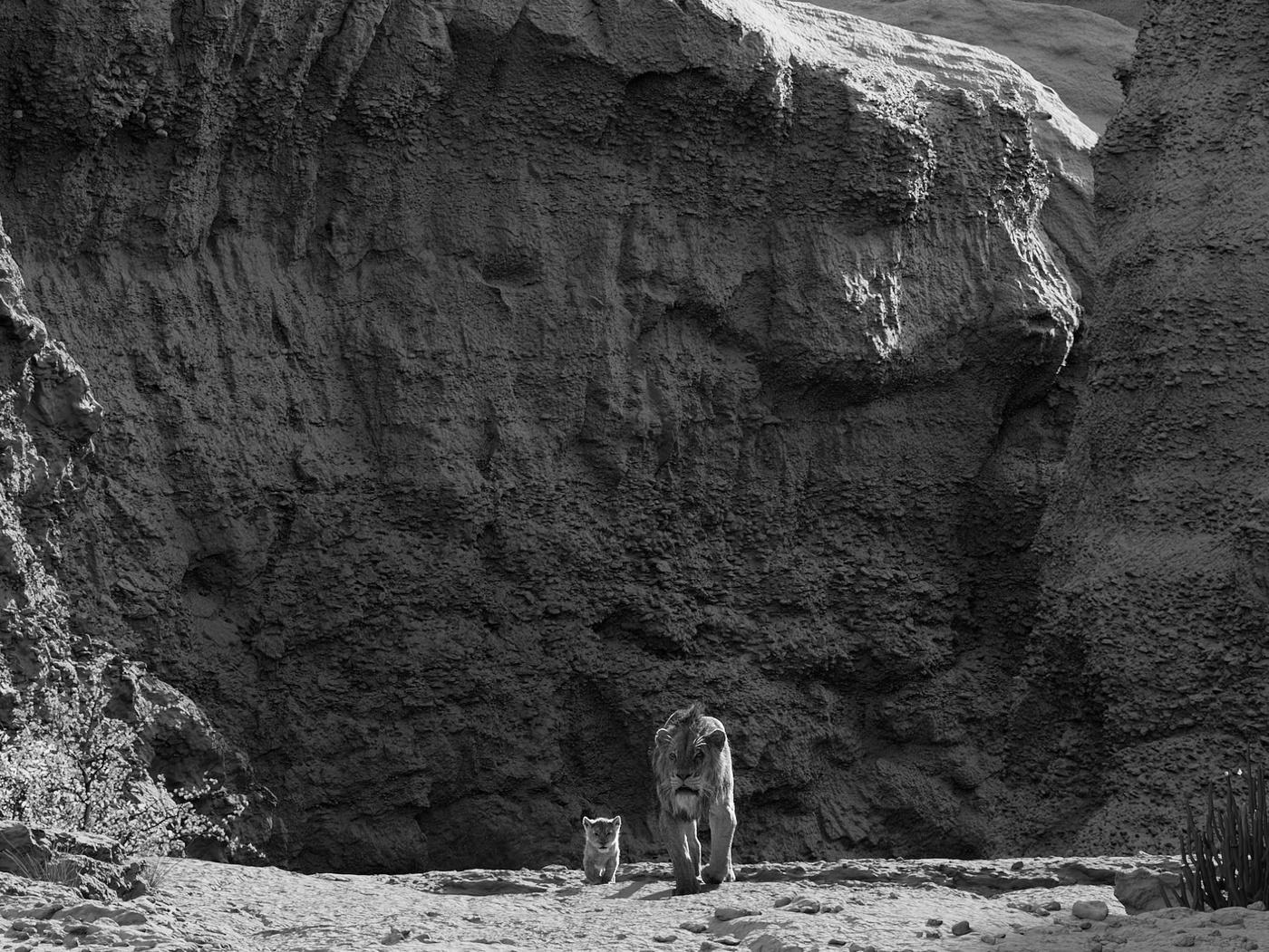 the lion king simba scar stampede gorge