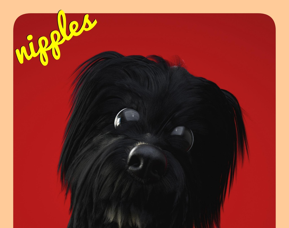 The pet called Nipplesby Bertil Toby Svanekiaer