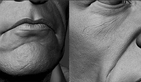 detailing skin pores wrinkles facial details 3d head