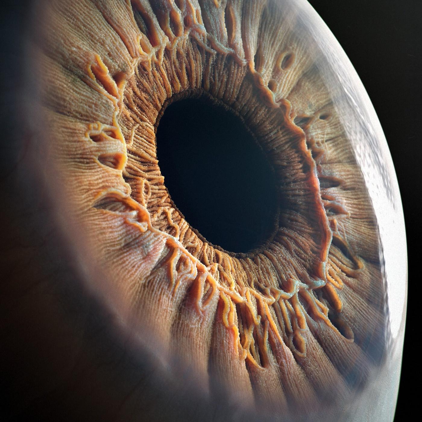 realistic eye pupil retina model 3d