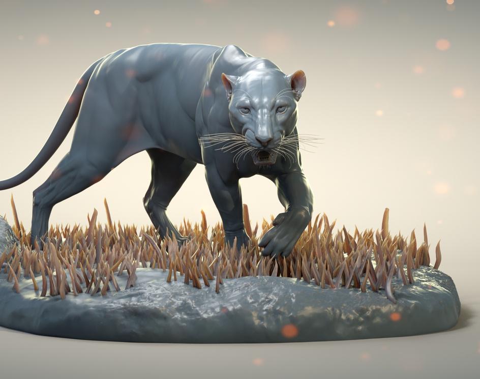 Panthera pardusby Kylian Zannettacci