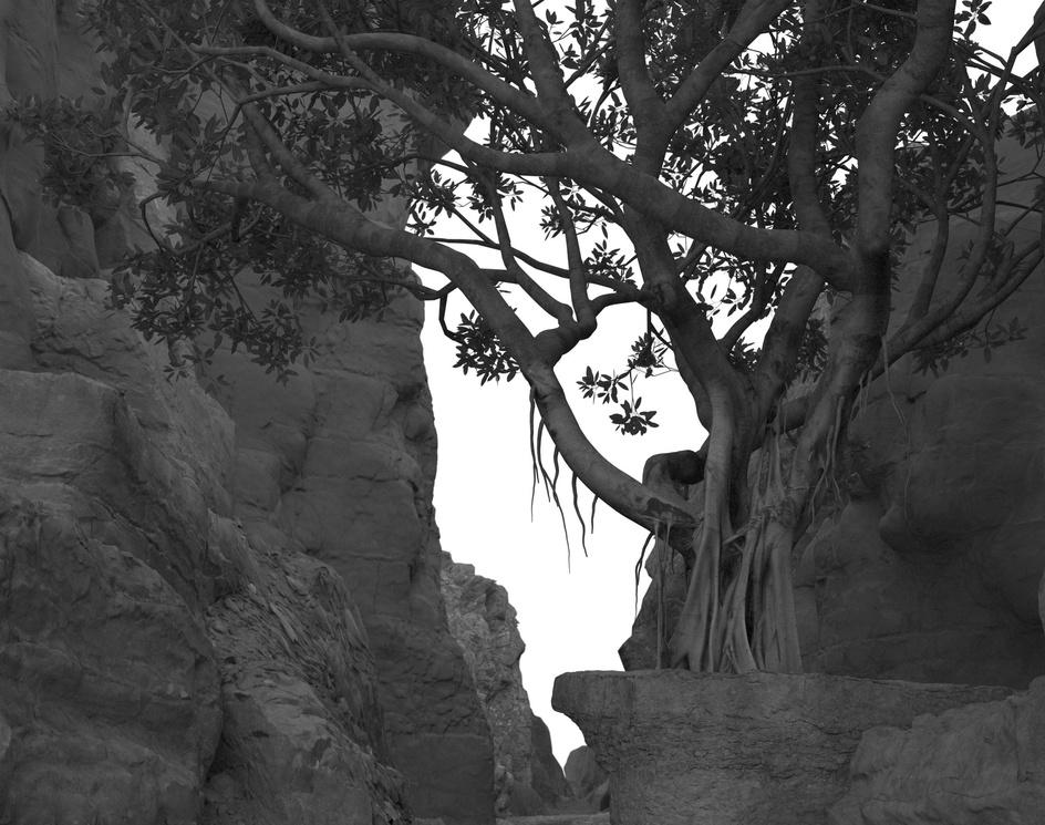 Canyon!!!by Nic Nguyen