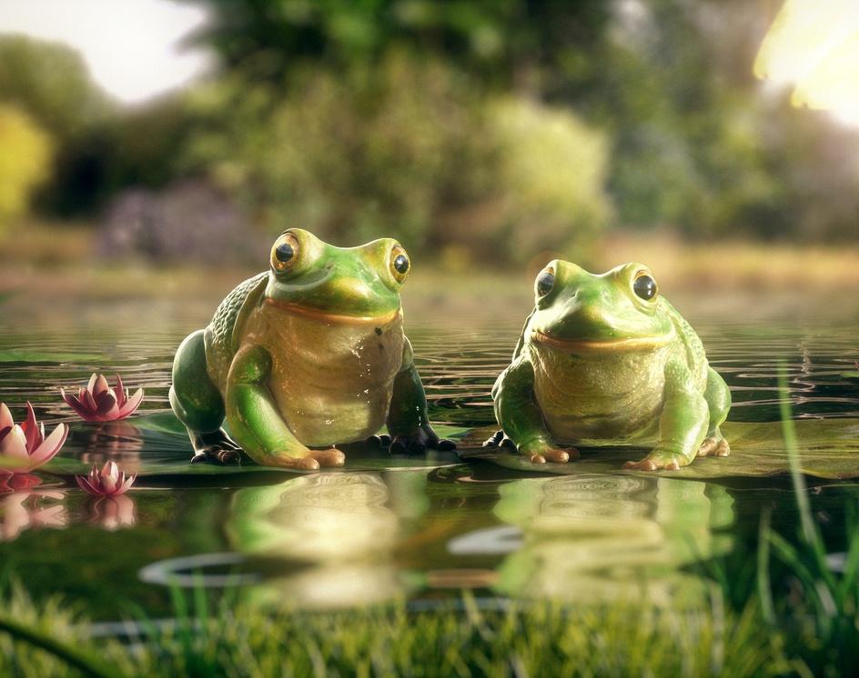 Frog For FiveStarby prashant shahane