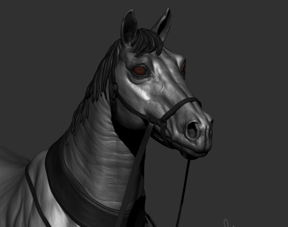 Horse Studyby Shrikant Pandey