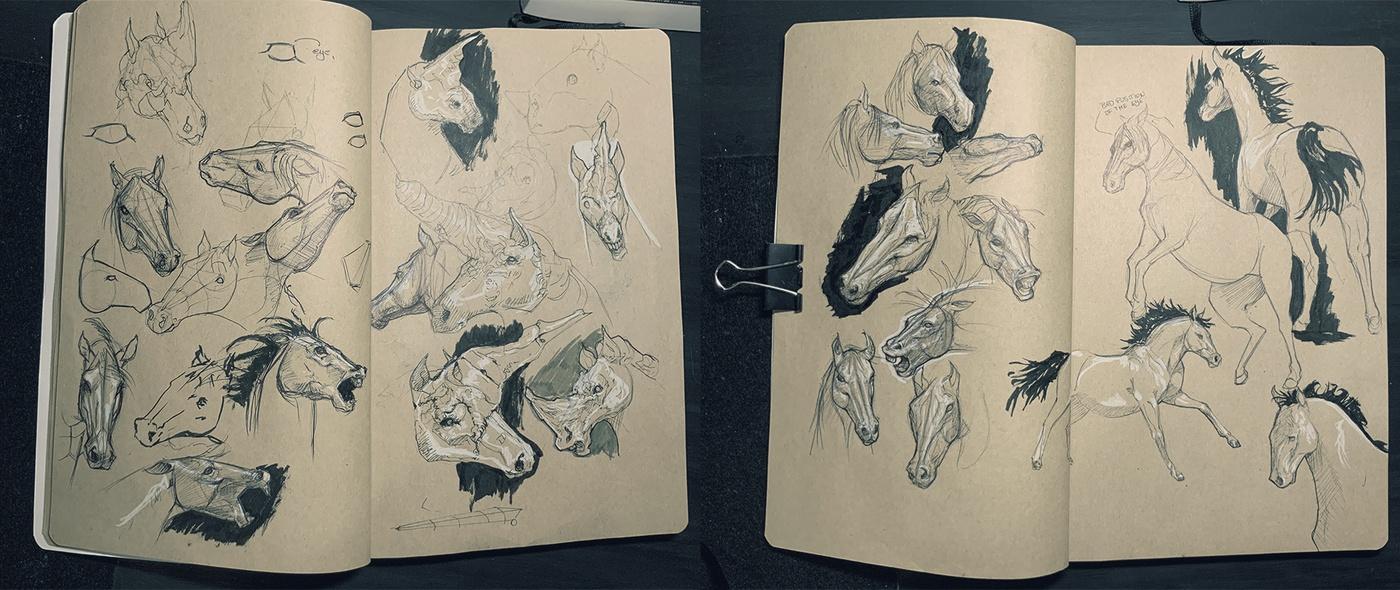 2d illustration digital digital art horses sketchbook concept design
