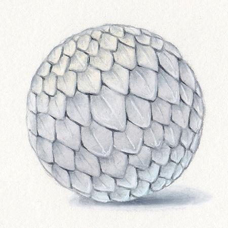 snakeskin, texture