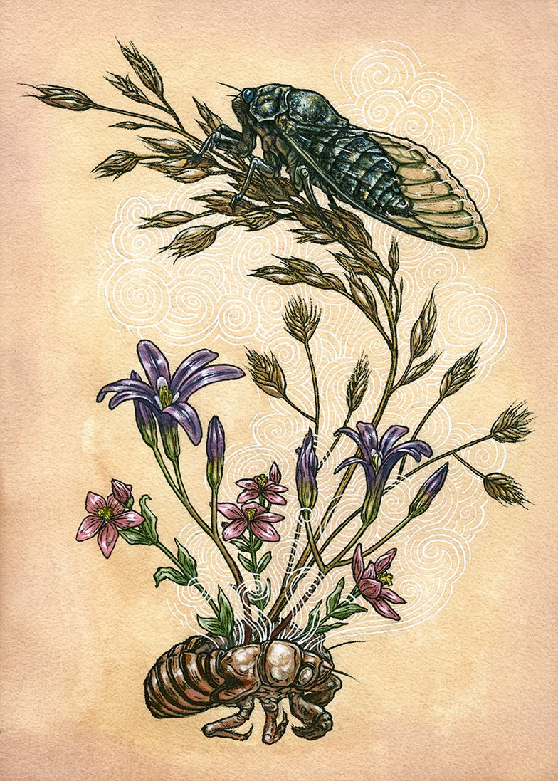 painting of cicada and flowers