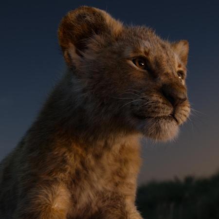the lion king simba cub