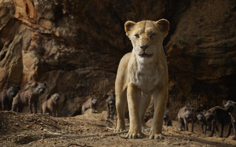 the lion king sarabi hyenas