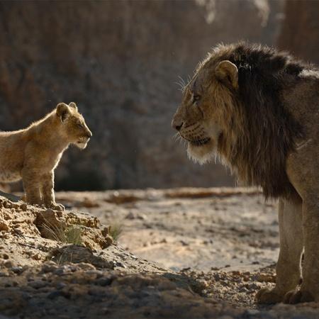 the lion king simba scar
