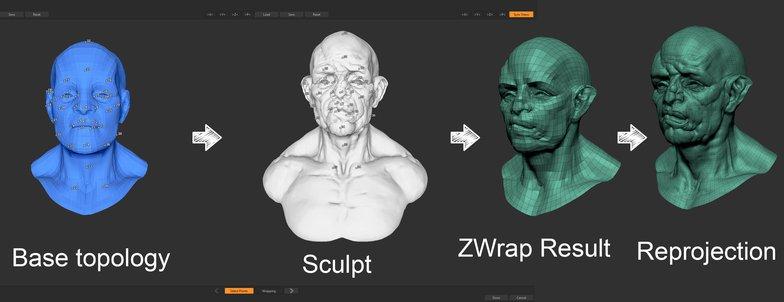 base topology 3d model male