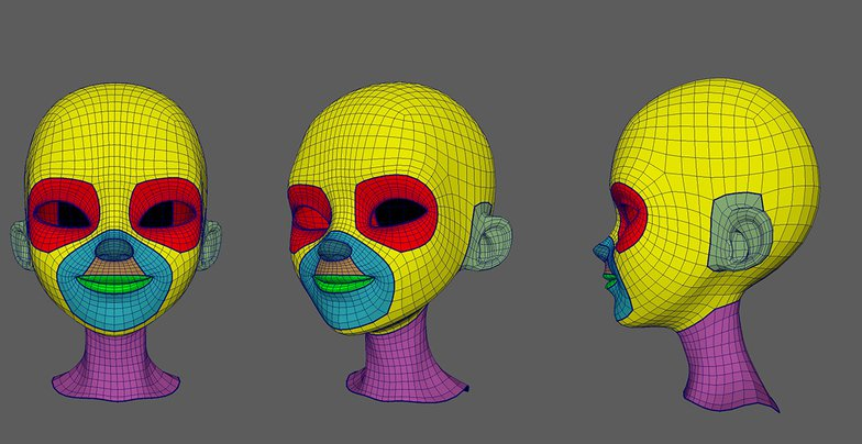 Topology on the face